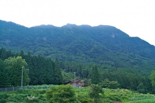shimpi-murakami-2