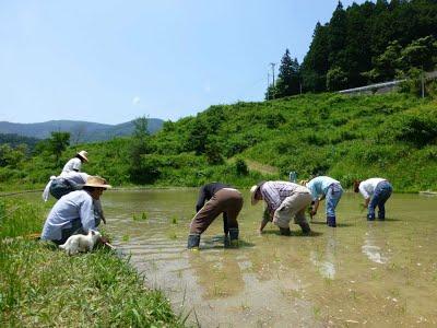 hiroshi-jinnno-4