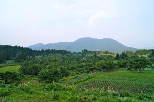 shimpei-murakami-14