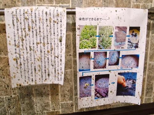 misako-kondo-3