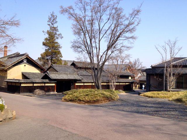 tsugio-ihimura-42