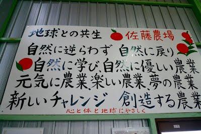 mutsumi-sato-6
