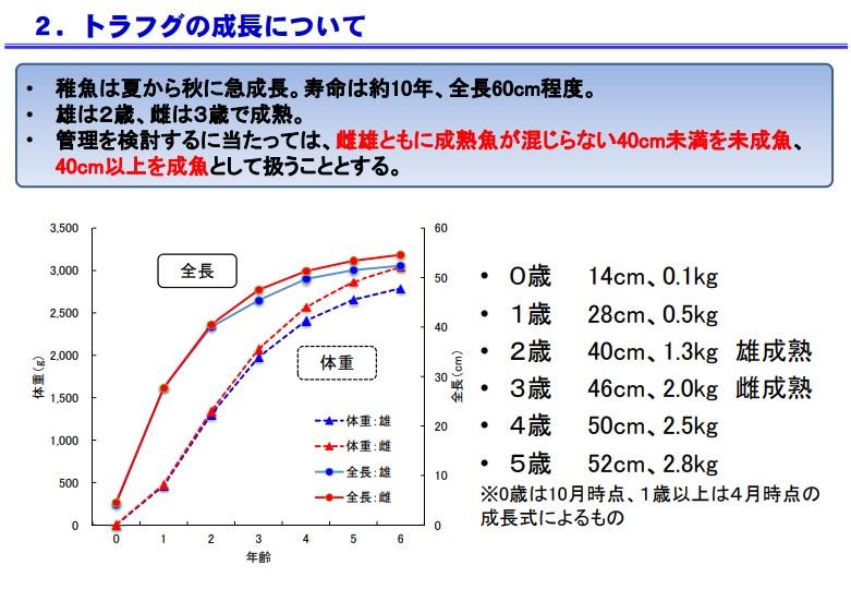 水産庁資料3