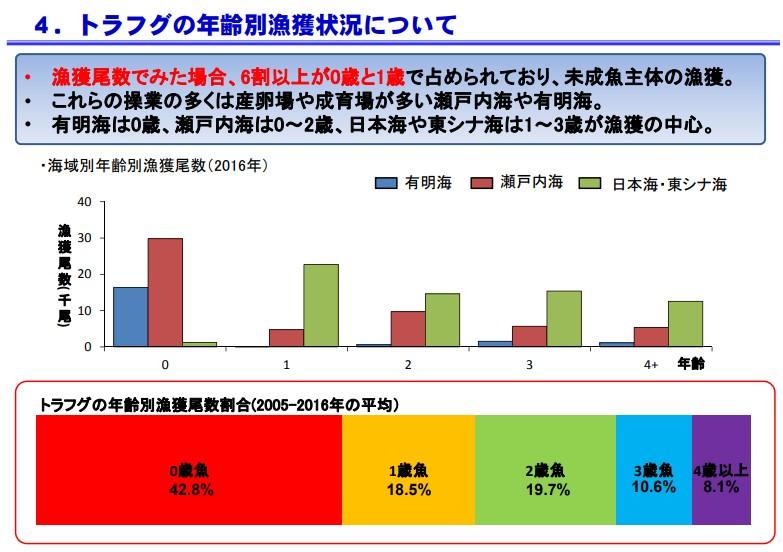 水産庁資料4