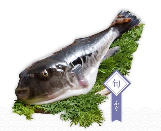 himaka-fugu